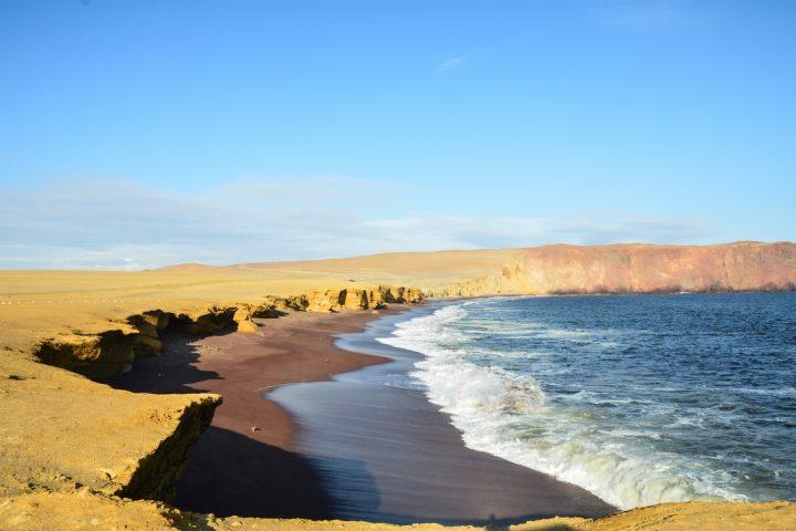 Réserve nationale Paracas