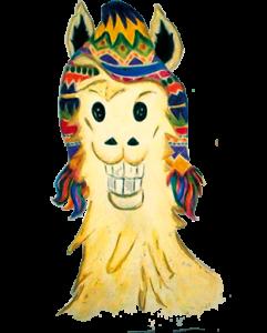 Lama Pasión Andina