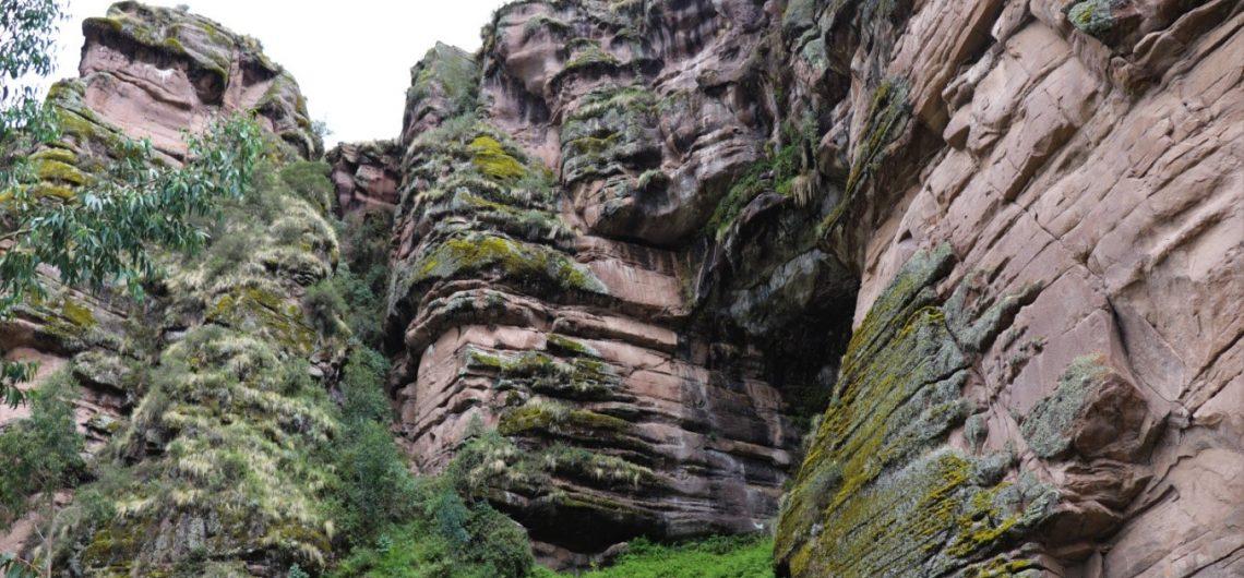 Pasion Andina