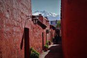 Arequipa - Couvent Santa Catalina - City Tour - Pasion Andina - Perou