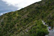 Chonta-condor-sky-cusco-perou-peru-pasion Andina-travel-nature-trvaelagency-voyage-sky-oiseau-wildlife-montagne-mountain