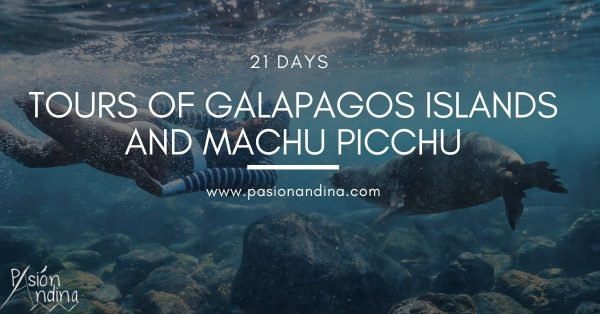 Tours of Galapagos islands and Machu Picchu