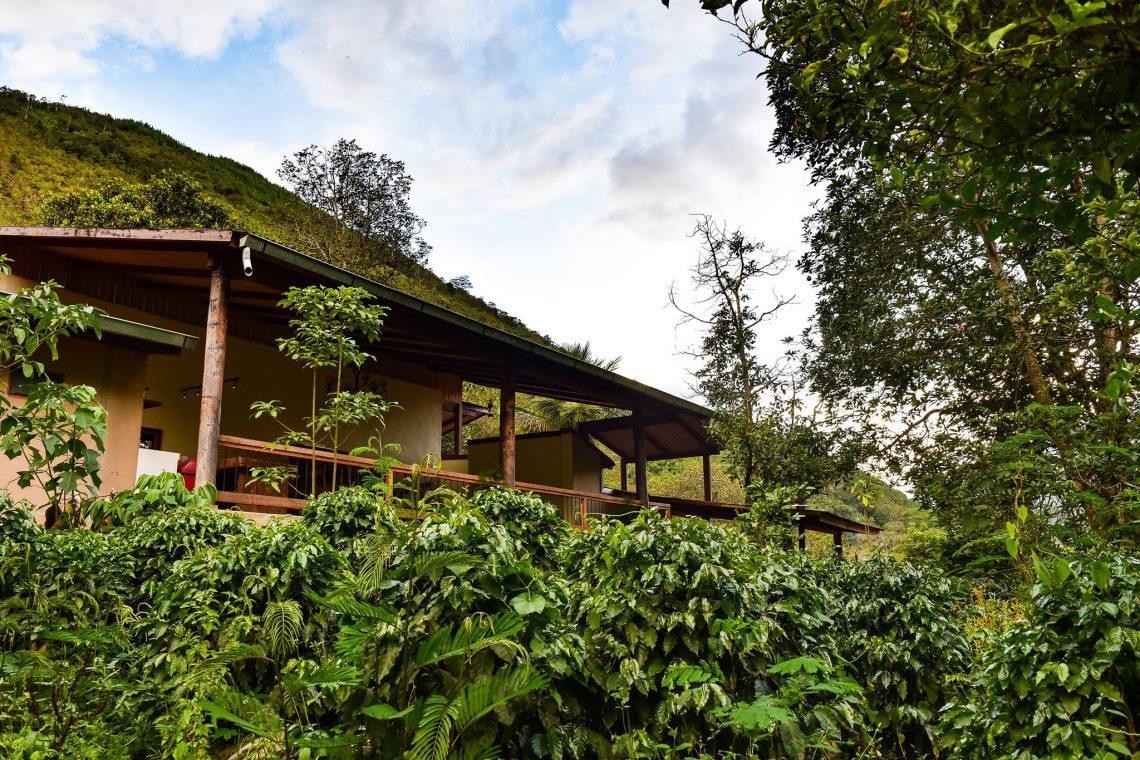 Palili - Casa de Campo - Quillabamba - La Convencion - Cusco