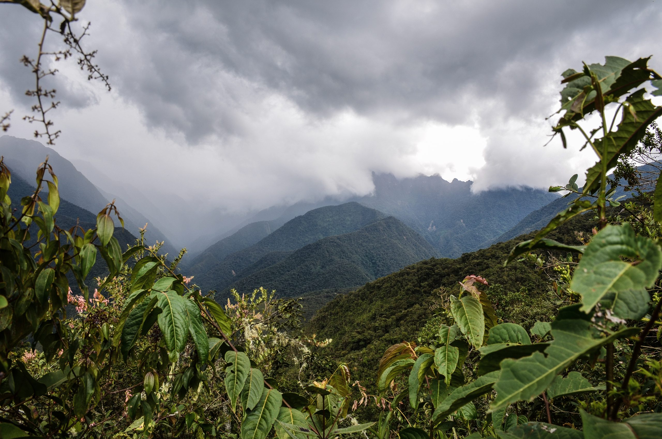 Tunkimayo - Quillabamba - La Convencion - Pasion Andina
