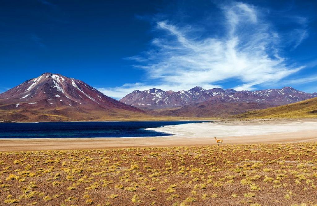 Pasión Andina - Chile
